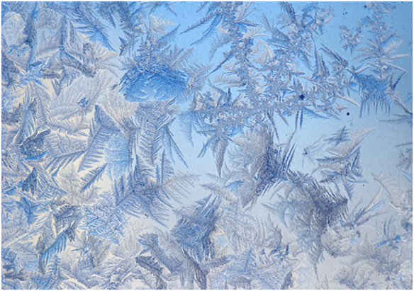 Ice crystals (tlindenbaum, flickr)