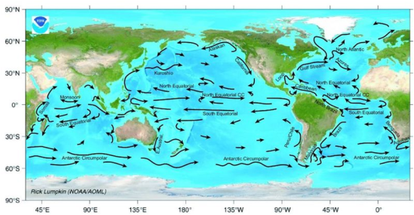 Current ocean circulation patterns (NOAA, Wikimedia commons)