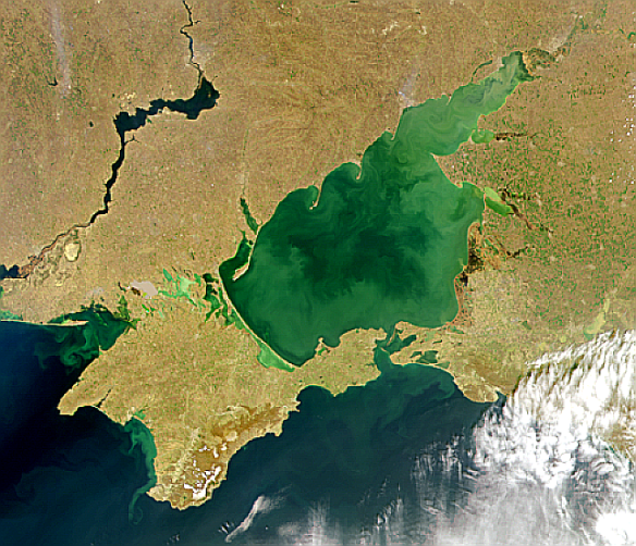 Eutrophication in the sea of Azov, south of the Ukraine  (SeaWiFS Project, NASA/Goddard Space Flight Center, and ORBIMAGE)