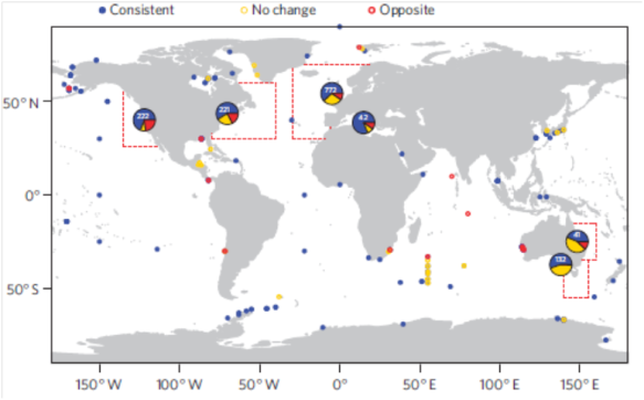 Global marine migration (from paper)