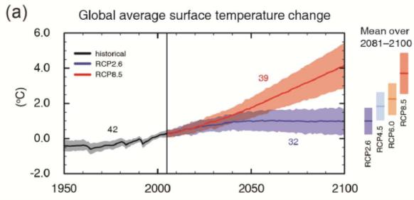 Representative Concentration Pathway (RCP) Scenarios from the IPCC AR5
