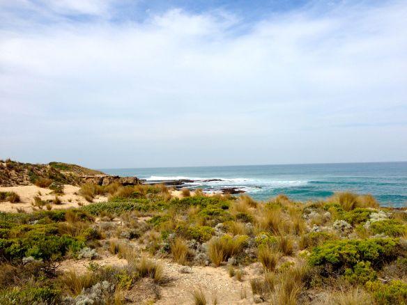 It looks pretty, but it's so hot the sand burns your feet. Mornington Peninsula, Vic (photo: Amy Huva)